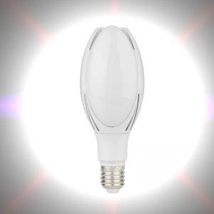 Bombilla LED para farolas de alta resistencia E27 30w 1